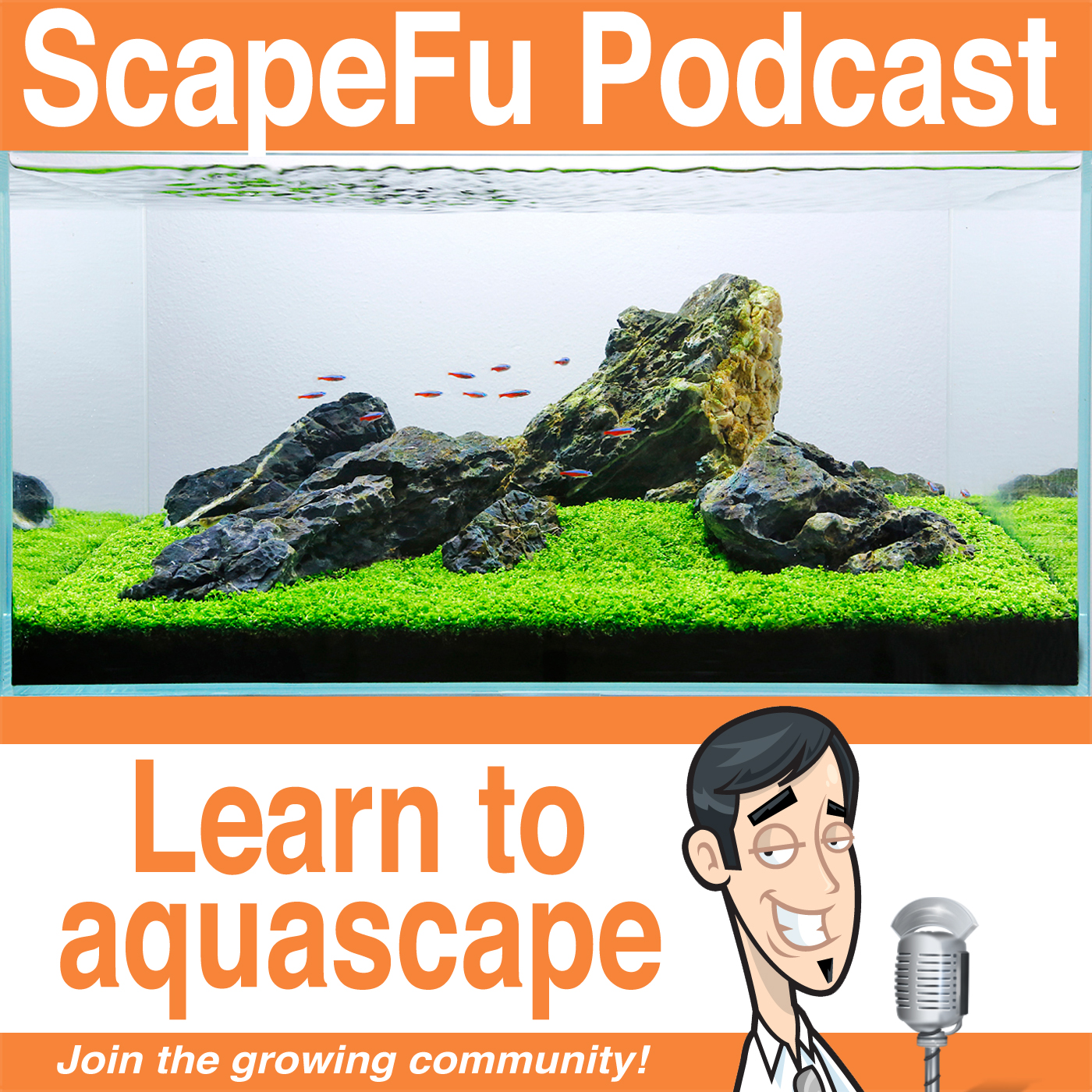 ScapeFu013: Cycling a planted fish tank?
