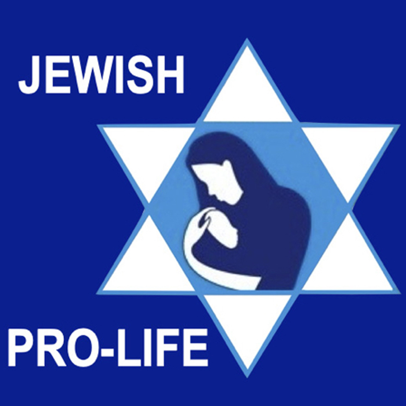 Jewish Pro-Life show art