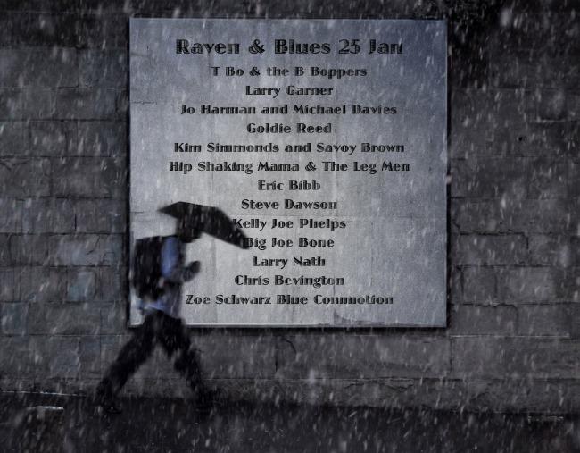 Raven and Blues 25 Jan 2014