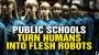 "Artwork for Government-run schools turn humans into ""flesh robots"""