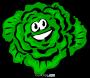 Artwork for Music Medley - Lettuce In!