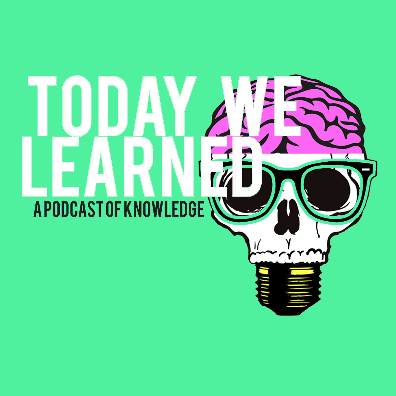 Today We Learned logo