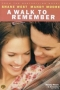 Artwork for A Walk to Remember Commentary