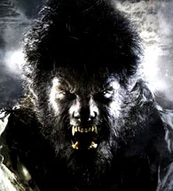 DVD Verdict 628 - F This Movie! (The Wolfman)