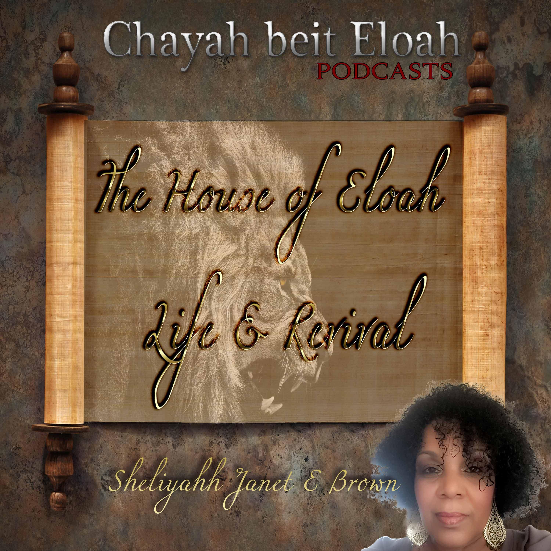 ChayahBeitEloah's podcast logo