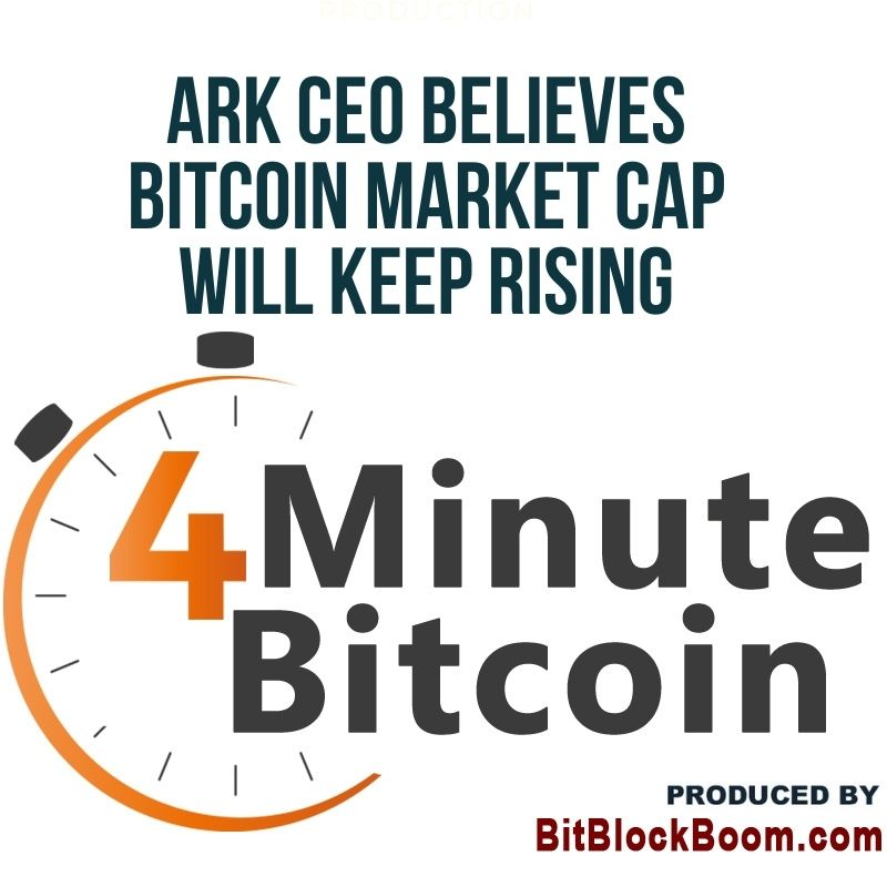 ARK CEO Believes Bitcoin Market Cap Will Keep Rising