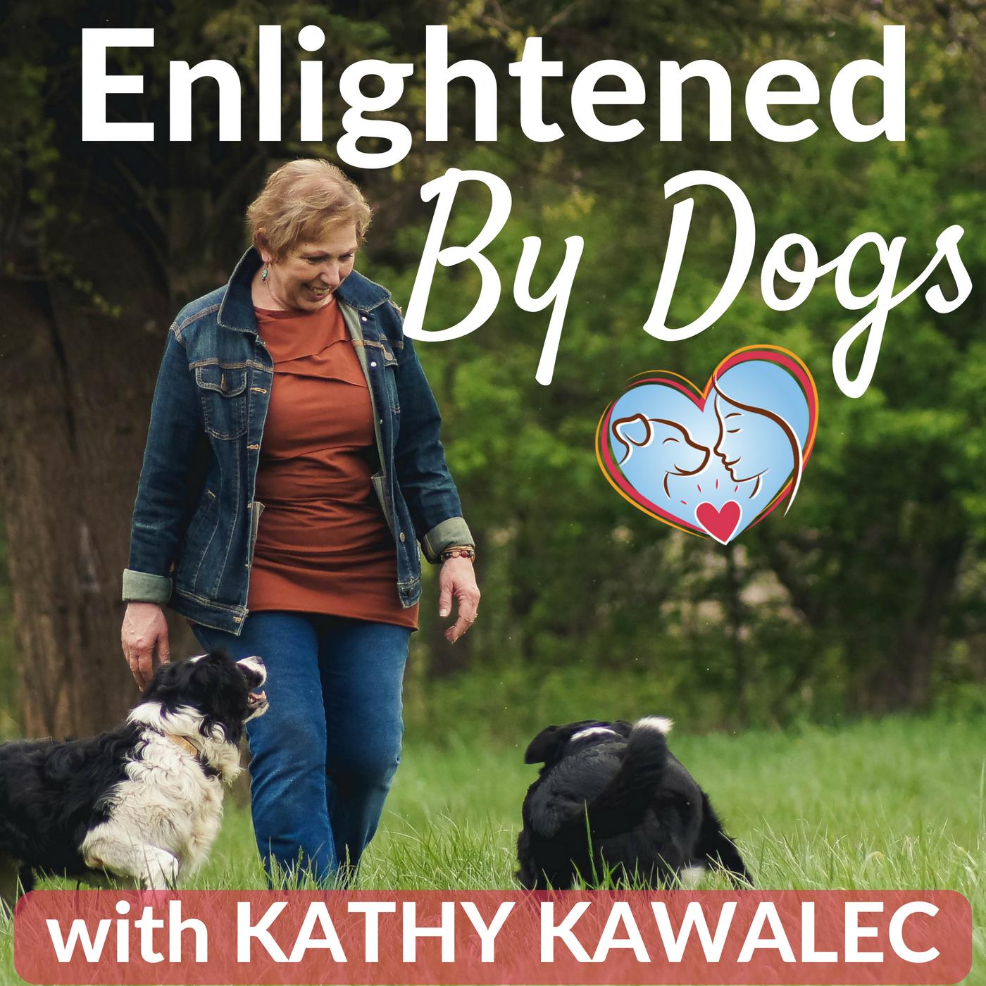 EBD179 Why Your Dog Won't Listen