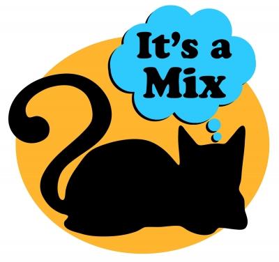 It's A Mix show image