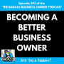 Artwork for Becoming a Better Business Owner   Part of the EMyth Revisited Series
