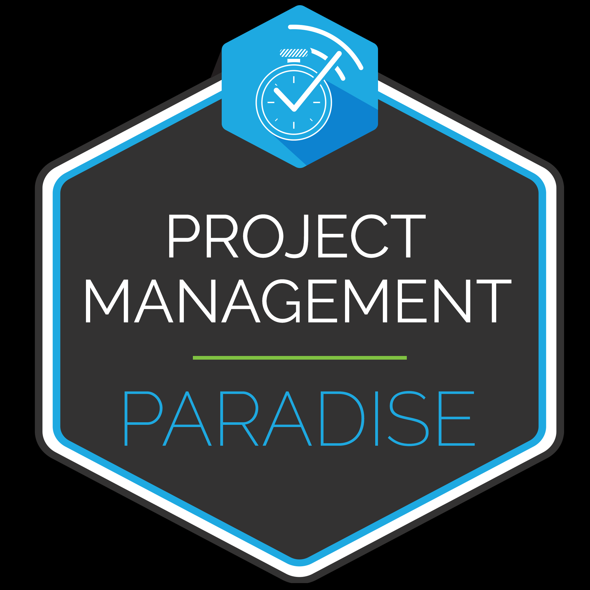 Project Management Paradise show art