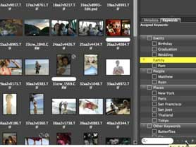 What's New in Bridge CS3 2.1 and Camera RAW 4.1 updates
