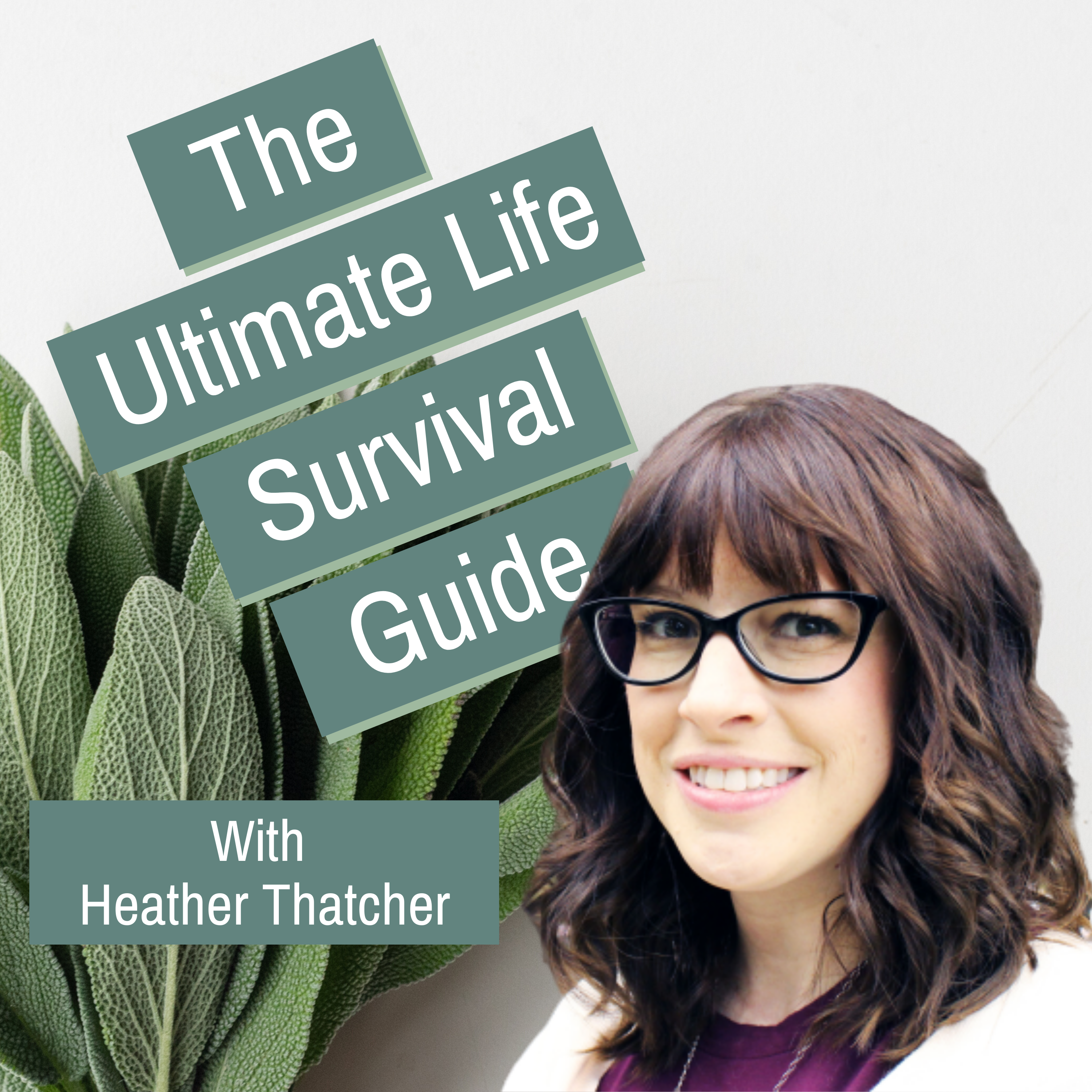 The Ultimate Life Survival Guide show art