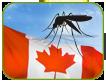 Sensibilisation des travailleurs canadiens au virus Zika