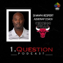 Artwork for Shawn Respert | Assistant Coach | Chicago Bulls