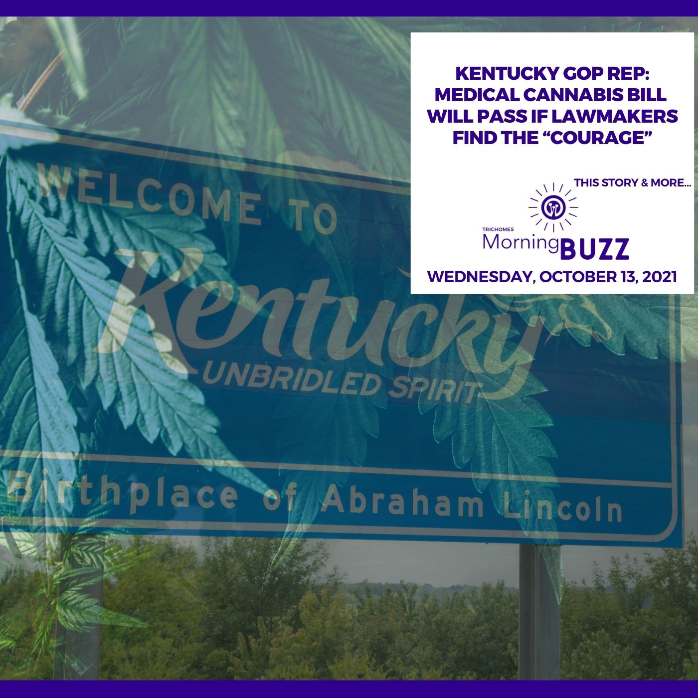 """Kentucky GOP Rep: Medical Cannabis Bill Will Pass If Lawmakers Find The """"Courage"""" show art"""