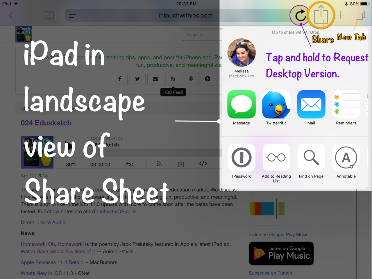 share sheet in iPad landscape view
