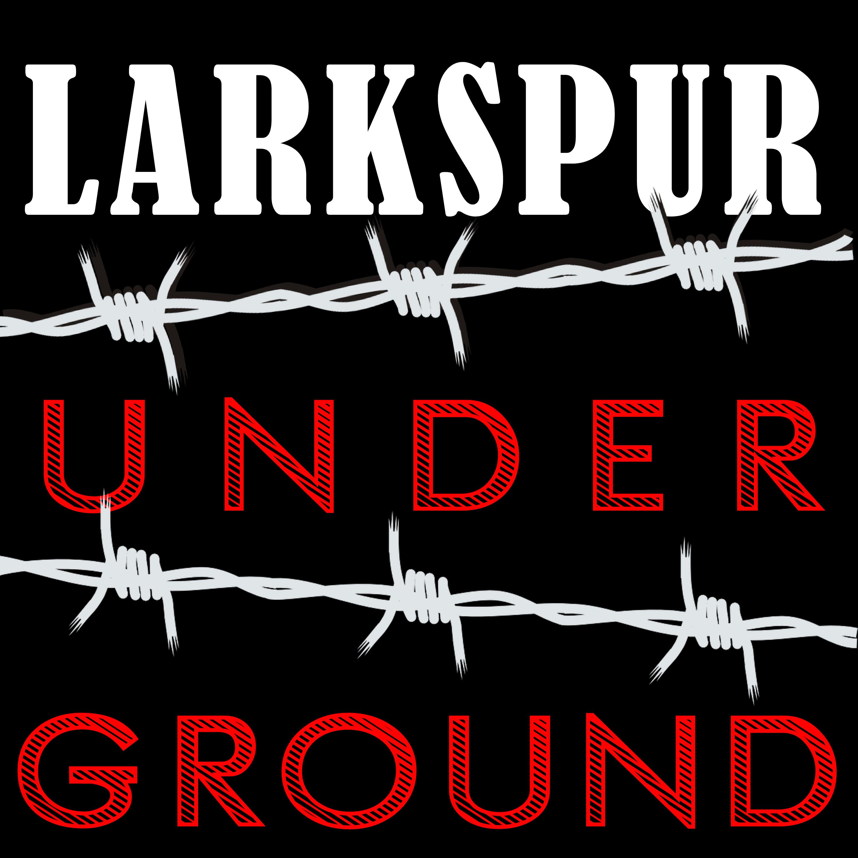 Larkspur Underground show art