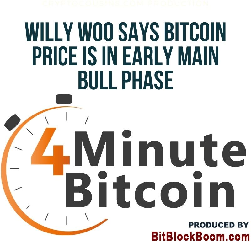 Willy Woo Says Bitcoin Price Is in Early Main Bull Phase