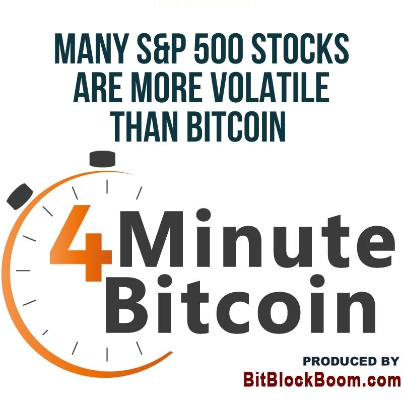 Many S&P 500 Stocks Are More Volatile than Bitcoin