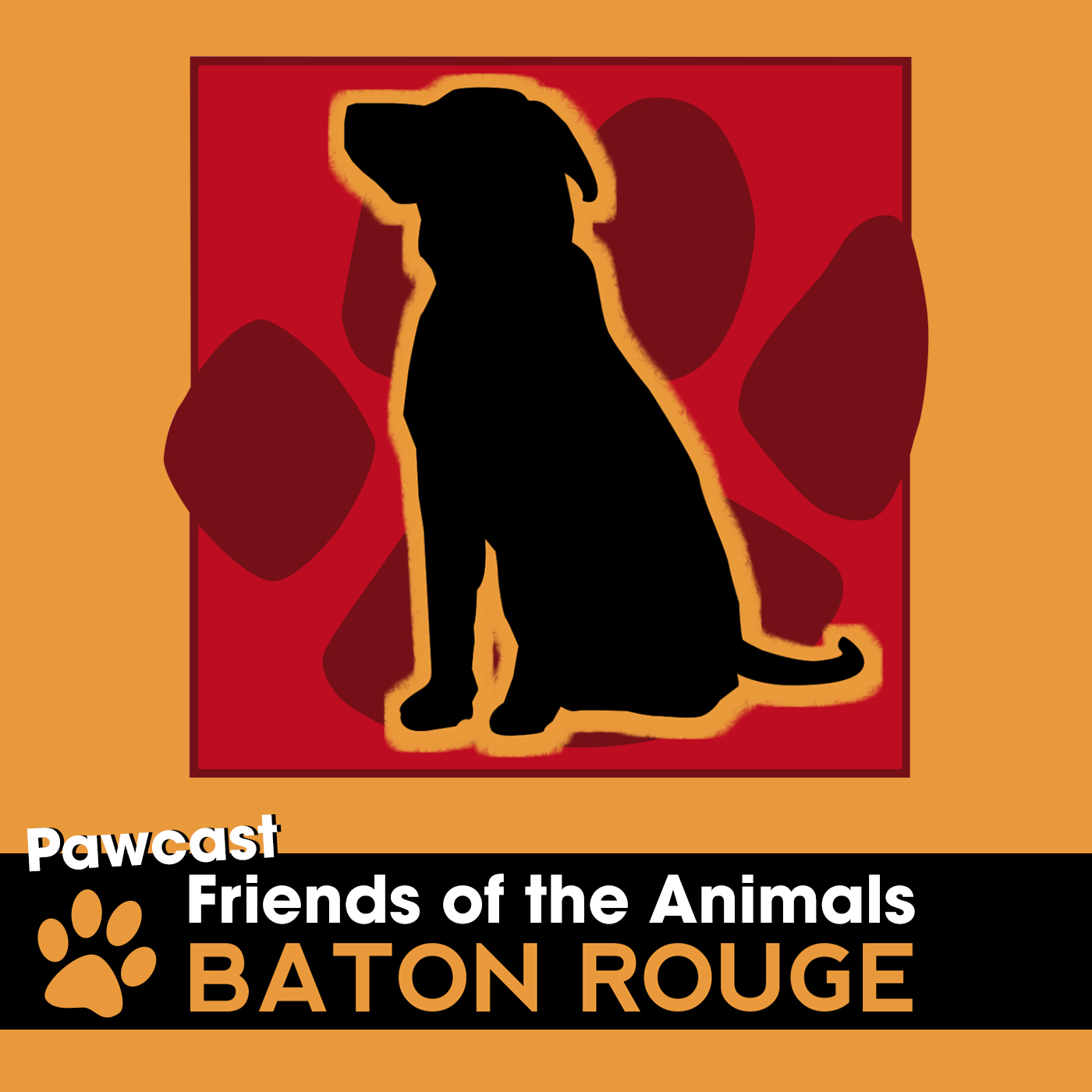 Artwork for Pawcast 012: A Day in the Life of The Dog Adoption House