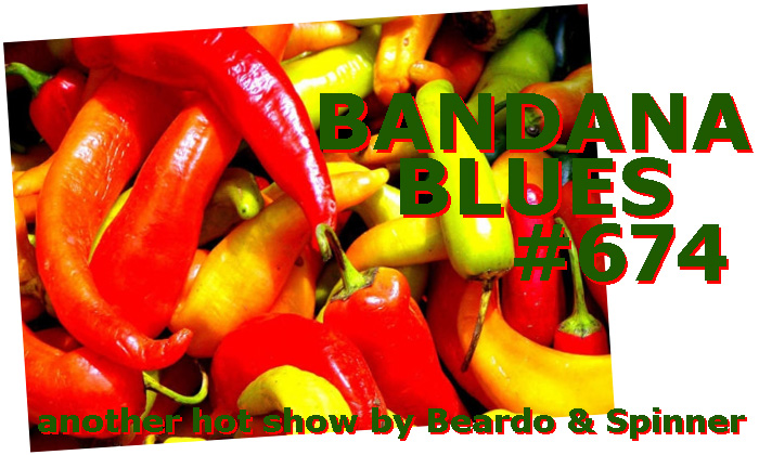 Bandana Blues #674 Great Show 4 NFL Playoffs