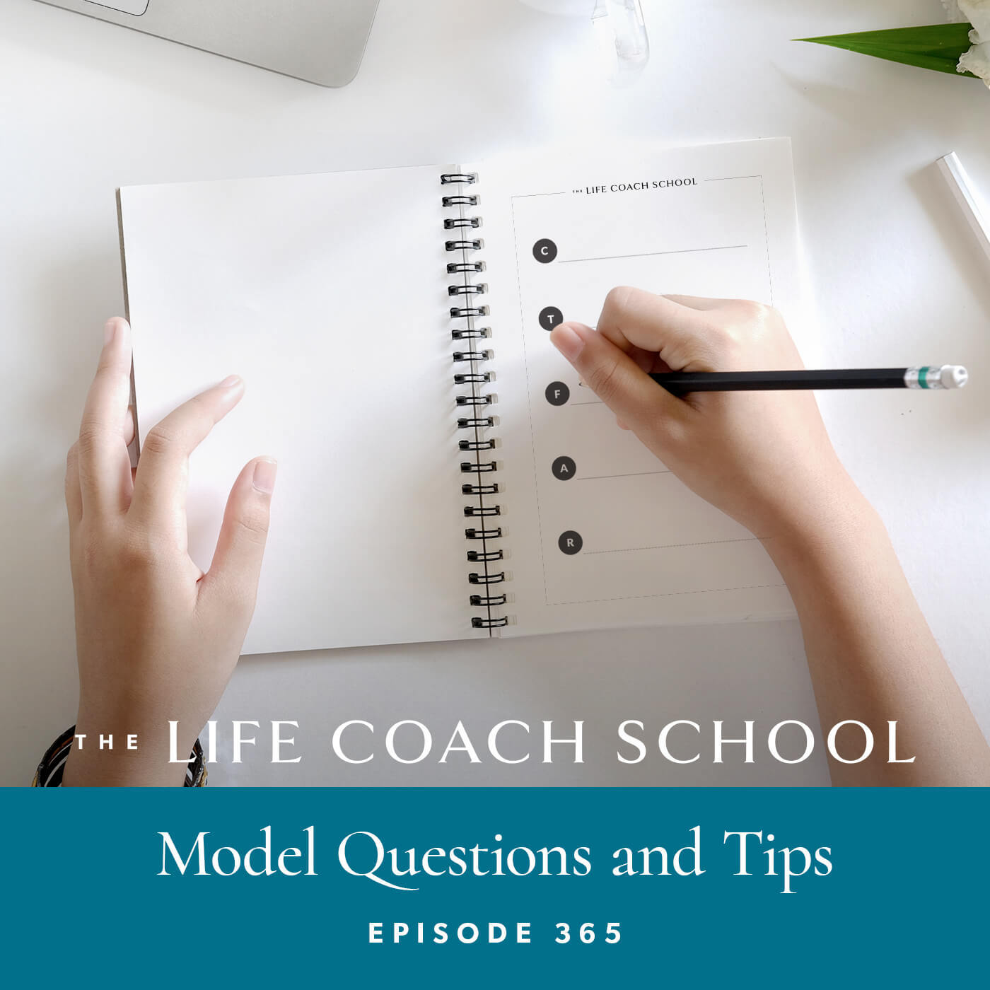 Ep #365: Model Questions and Tips
