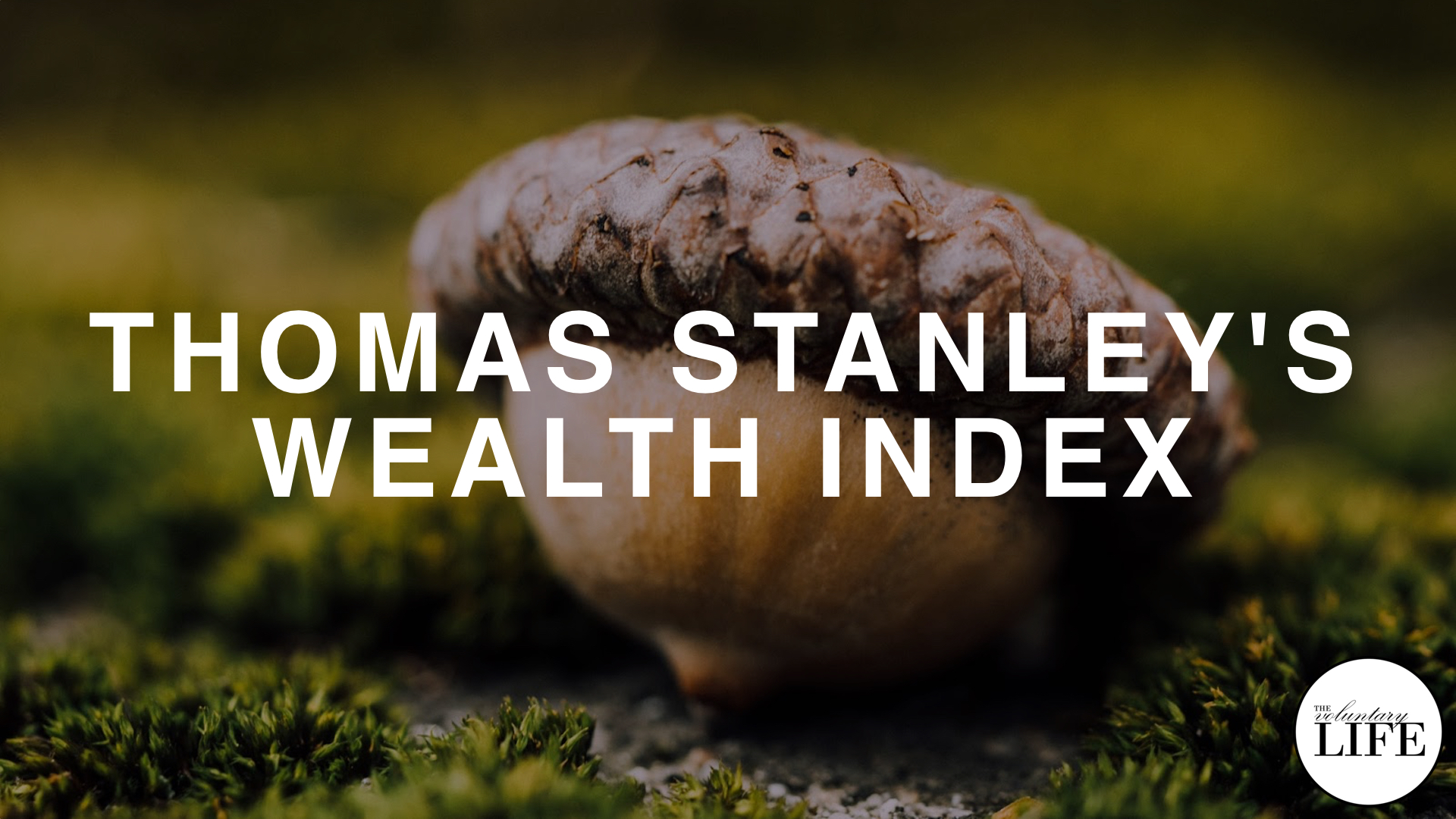 264 Thomas Stanley's Wealth Index