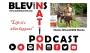 Artwork for Blevins Nation Podcast Epi 13:  Charles Wieand - Wild Charles