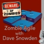 Artwork for Zombie Agile with Prof. Dave Snowden
