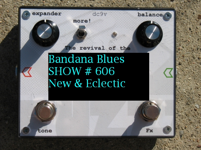 Bandana Blues#606 New & Eclectic