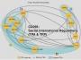 Artwork for CD095: Secret International Regulations (TPA & TPP)