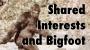 Artwork for Episode 47: Shared Interests and Bigfoot