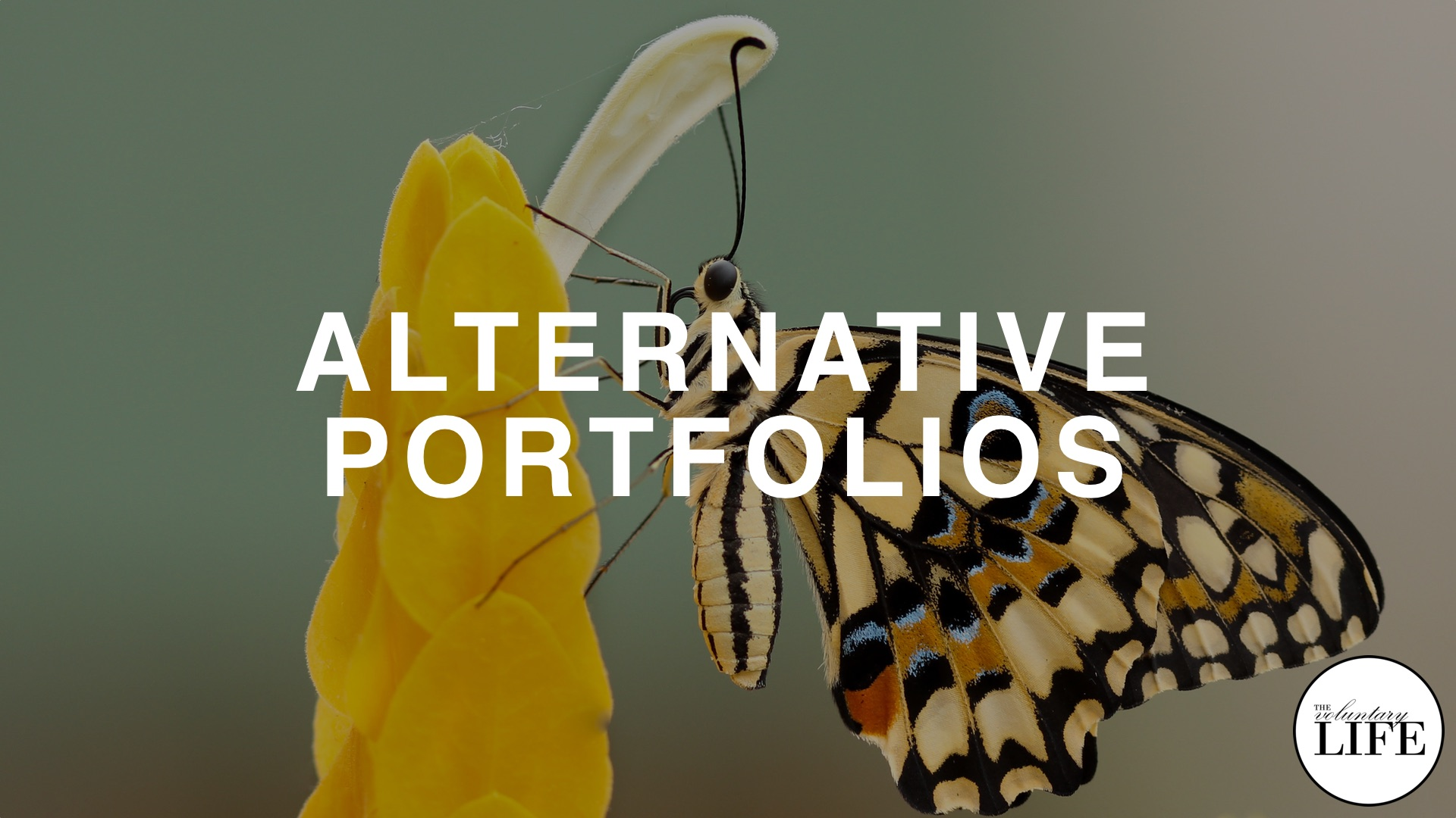 Bonus Episode 84: Alternatives To The Permanent Portfolio