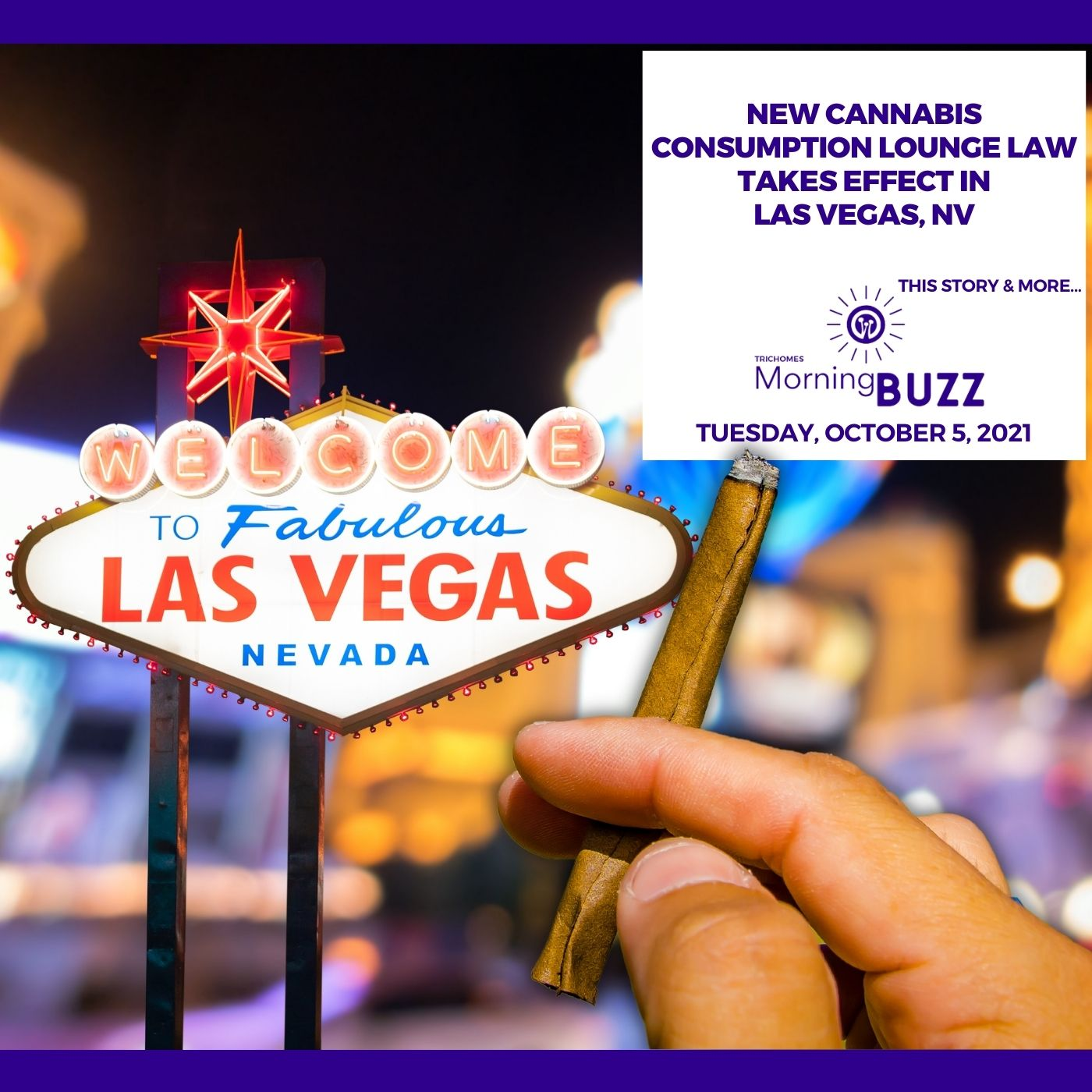 New Cannabis Consumption Lounge Law Takes Effect In Las Vegas, NV show art