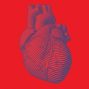 Artwork for Your Ideal Heart Health with Donald Lloyd-Jones, MD, ScM