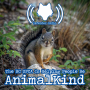 Artwork for The BC SPCA Is Helping People Be AnimalKind (517)