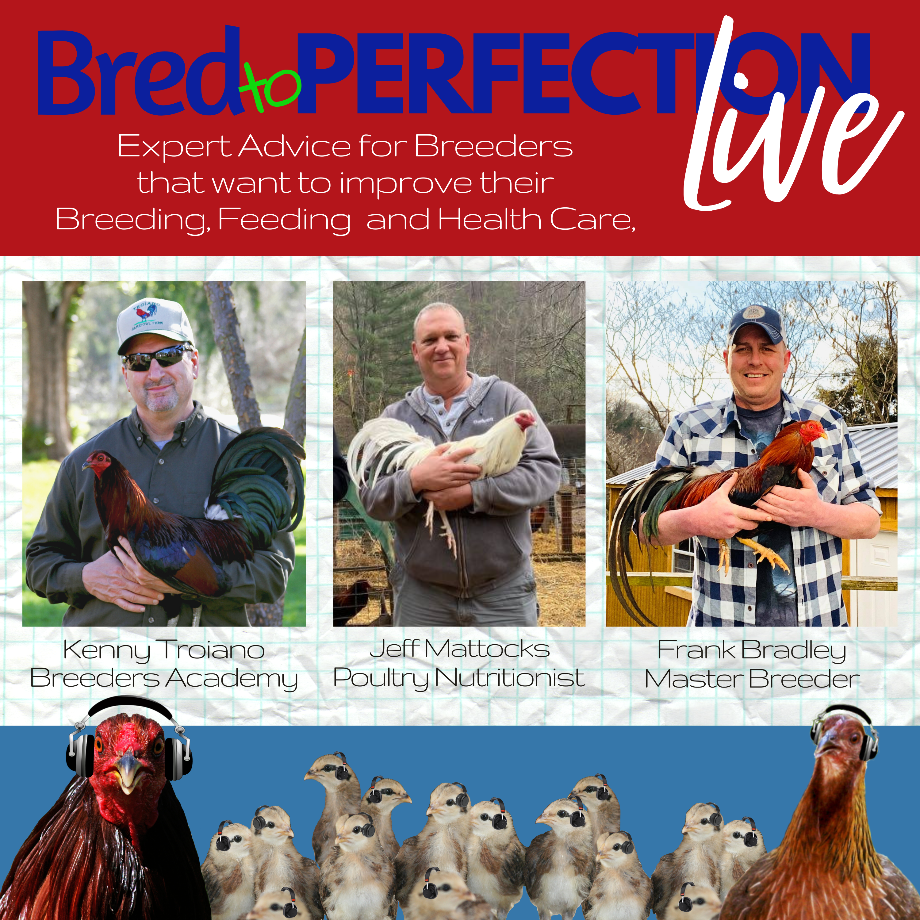 Ep2 – Bred to Perfection Live - Feeds, Feeding and Nutrition with Jeff Mattocks
