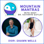 Artwork for MMP109 - Tap into the Energy Formula with Shawn Wells