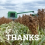 Artwork for Celebrating Harvest - Thanksgiving with Team Sorghum
