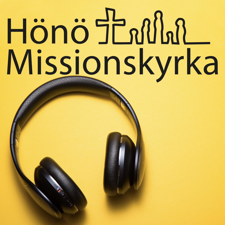 Hönö Missionskyrka show art