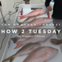 Artwork for HOW 2 TUESDAY #36 - Big Snappers Offshore