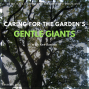 Artwork for SG592: Trees: Caring for the Garden's Gentle Giants with Rex Bastian