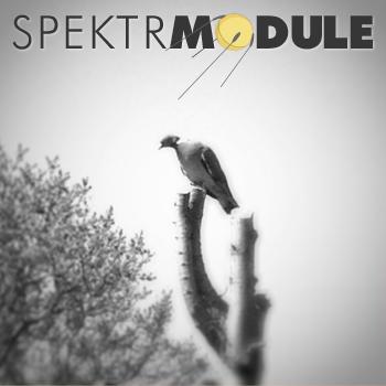 SPEKTRMODULE: Podcast 24 - Overlook