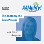Artwork for The Anatomy of a Sales Process