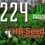 Artwork for 224 Horny Buck Seed - Working Class Bowhunter