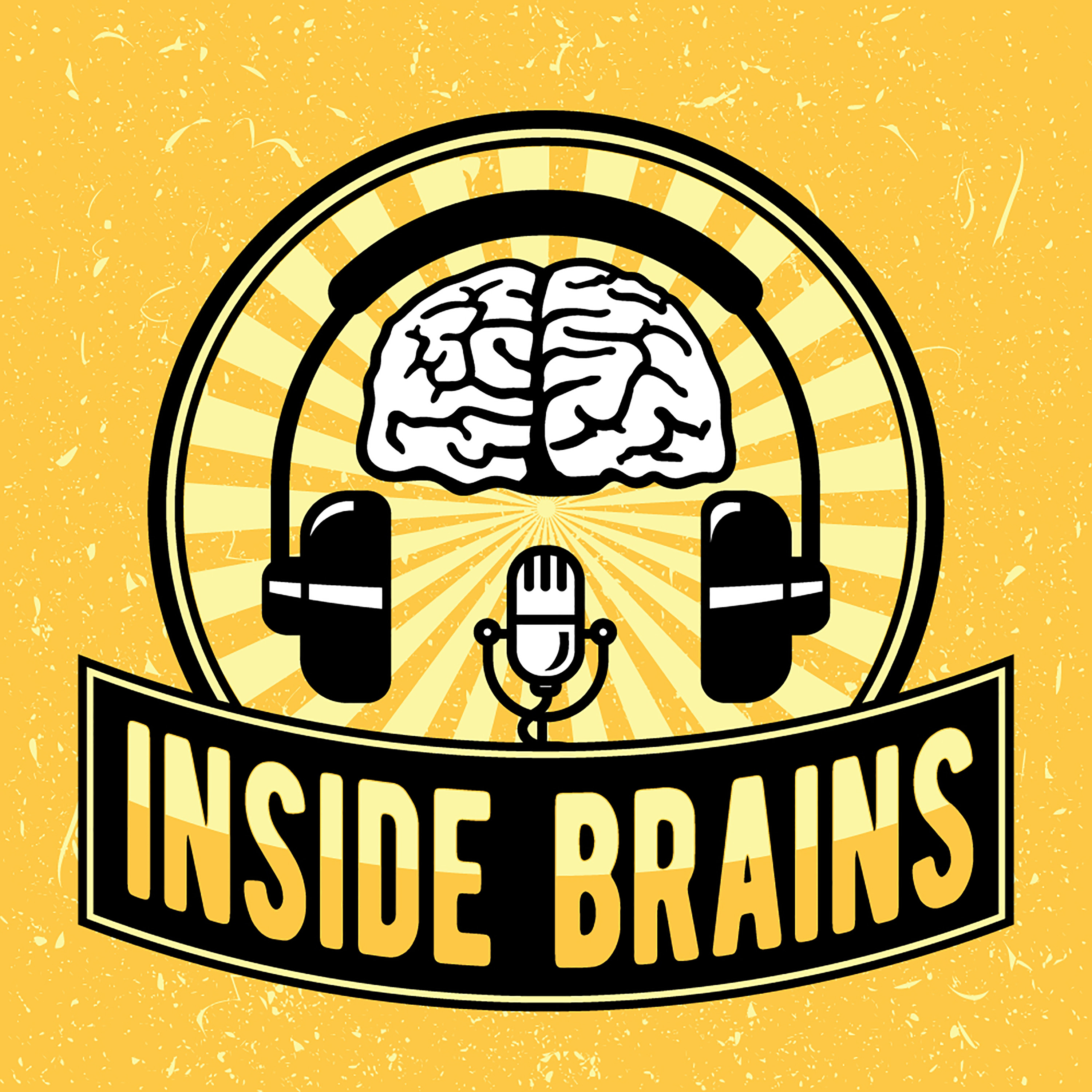 Inside Brains