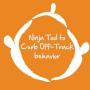 Artwork for Beat Off-Track Behavior with this Secret Ninja Parenting Tool