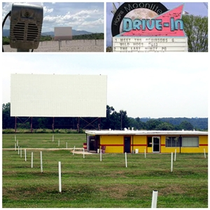 056-101014 In the Treasure Corner - Drive-In Theaters