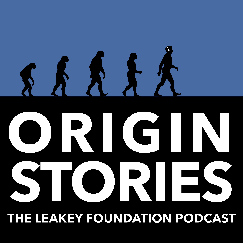 Origin Stories show art