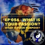 Artwork for Ep 056 - What Is Your Passion? What Is Your Purpose?